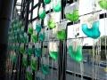 Inauguration Ville Biomimétique, Ville de demain